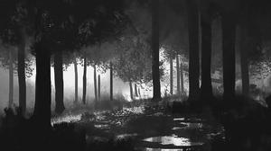 Fantasy Forest 1920x1080 Wallpaper