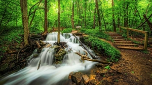 Earth Waterfall Forest Green Steps 2048x1152 Wallpaper