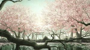 Cherry Blossom Forest Gate Lake Sky Sunshine Tree 1737x1053 Wallpaper