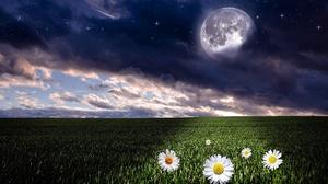 Cloud Daisy Field Full Moon Landscape 1920x1080 Wallpaper