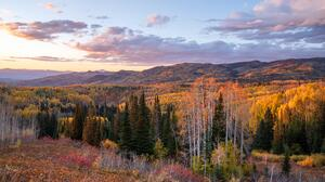 Nature Landscape Forest Trees Fall Colorado USA 6000x3375 Wallpaper