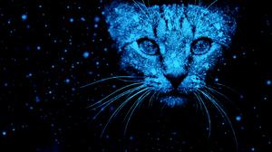 Artistic Blue Cat Pet 2878x1619 Wallpaper
