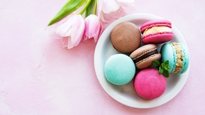 Macaron Sweets Tulip 5498x3653 Wallpaper