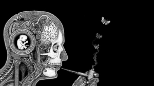 Brain Butterfly Smoke Smoking Pipe 1440x900 Wallpaper