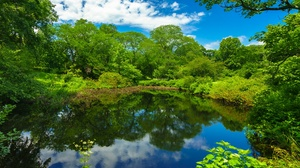 Boston Cloud Greenery Massachusetts Park Pond Reflection Tree 2048x1366 Wallpaper