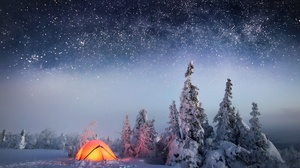 Nature Winter Snow Night Tree Sky Stars 1920x1294 Wallpaper