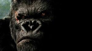 Movies King Kong Creature 2005 Year 1920x1080 Wallpaper