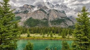 Forest Mountain Cloud 2047x1365 Wallpaper