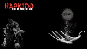 Korean Korean Martial Arts Hapkido 1920x1080 Wallpaper