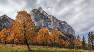 Outdoors Nature Landscape Trees Fall Mountains 2560x1440 Wallpaper