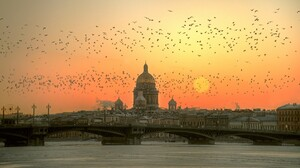 Saint Petersburg Russia Winter Bird Sun Morning Bridge 2048x1261 Wallpaper