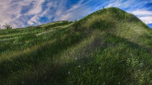 Earth Field Grass Nature 5000x2815 Wallpaper