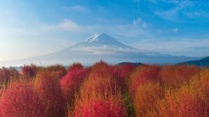 Nature Landscape Plants Clouds Sky Mountains Sunrise Bushes Yamanashi Mount Fuji Japan 1920x1080 Wallpaper