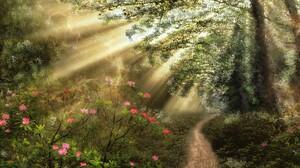 Artistic Flower Forest Path Sunbeam Sunshine 1920x1200 Wallpaper