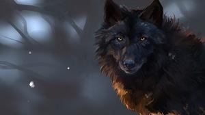Animal Wolf 1920x1200 Wallpaper