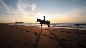 Photography Horse Riding 1920x1080 wallpaper