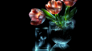 Flower Glass Pink Flower Tulip 1920x1403 wallpaper
