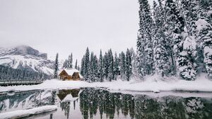 Cabin Forest Snow 5397x3571 wallpaper