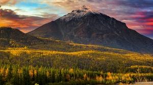 Fall Landscape Nature Alaska Usa Forest 2400x1602 Wallpaper