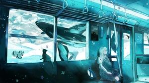 Cat Underwater Whale 2003x1211 Wallpaper