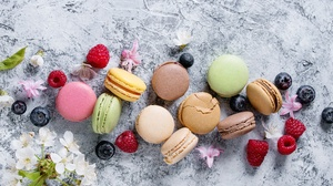 Macaron Still Life Sweets 5038x3359 Wallpaper