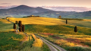Field Hill Italy Landscape Nature Tuscany 1920x1153 Wallpaper