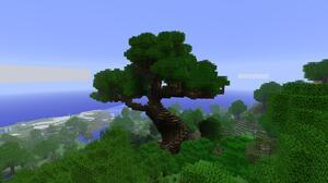Minecraft Mojang Video Game Tree 1920x1086 Wallpaper