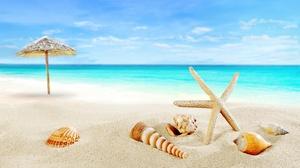 Beach Horizon Ocean Sand Sea Shell Tropical 5855x3588 Wallpaper