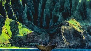 Nature Landscape Mountains Hawaii National Park Whale Animals Portrait Display Water Sea Tail 1080x1350 Wallpaper