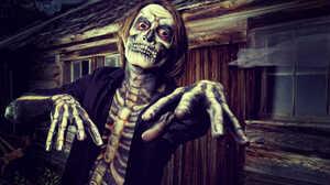Costume Halloween Holiday Skeleton 1920x1080 Wallpaper