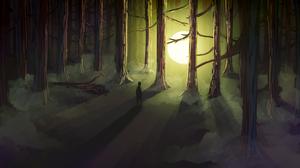 Dark Forest 1920x1080 Wallpaper