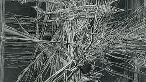 Digital Art Abstract Monochrome Knight Branch Roots Creepy Hands Aibek Begalin Trees 2048x1411 Wallpaper