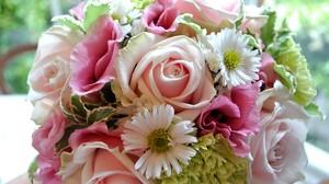 Bouquet Daisy Flower Rose 5120x3200 Wallpaper