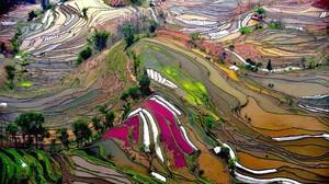 Terraced Field Rice Paddy Field Landscape 2074x1380 Wallpaper