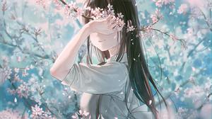 Cherry Blossom Flowers Long Hair Original Characters Anime Anime Girls 1400x1400 Wallpaper