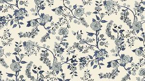Flower Carnation 1920x1080 Wallpaper