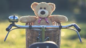 Stuffed Animal Teddy Bear 5472x3648 Wallpaper