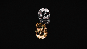 Silver Dubstep Riddim Dubstep Music Gold Skull 1920x1080 Wallpaper