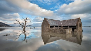 Building Reflection Tree Water 2036x1305 Wallpaper
