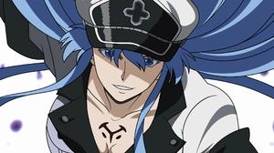Esdeath Akame Ga Kill Blue Hair Looking At Viewer Blue Eyes Grin Akame Ga Kill Anime Girls 1920x1080 Wallpaper