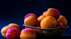 Apricot Fruit 2048x1365 Wallpaper