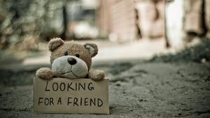 Depth Of Field Friend Statement Stuffed Animal Teddy Bear 3840x2400 Wallpaper