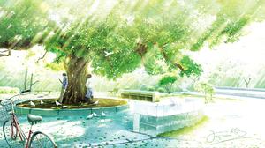Bicycle Sunbeam Tree 2000x1256 Wallpaper