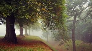 Fall Fog Foliage Park Tree 1920x1440 wallpaper