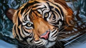 Close Up Face Painting Tiger 1920x1200 Wallpaper