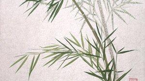 Earth Bamboo 1992x1404 Wallpaper