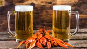 Alcohol Beer Crayfish Drink Glass 4800x3200 Wallpaper