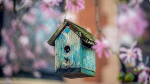Man Made Bird House 3840x2160 Wallpaper