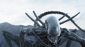 Alien Creature Movies Alien Covenant Science Fiction Horror Creature Xenomorph Movie Scenes 1920x1098 Wallpaper