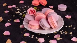 Macaron Still Life Sweets 5393x3600 Wallpaper